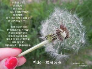 dandelion1