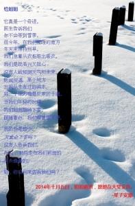 toZhihong