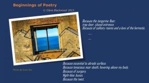 poetryPhoto