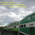 train-haiku