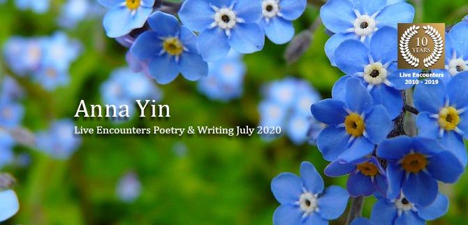 Yin-profile